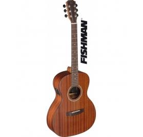 James Neligan DEV-PFI elektro-akusztikus gitár