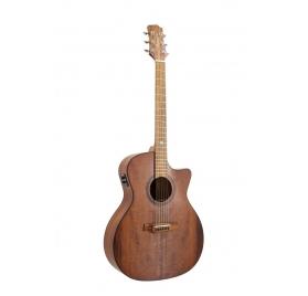 Randon RGI-14VT-CE gitár