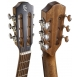 Baton Rouge  X54S/PE-BT Parlor elektroakusztikus gitár