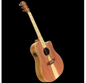 Cole Clark FL2EC-RDBL-SB elektroakusztikus gitár