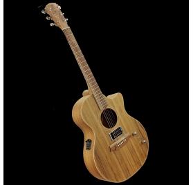 Cole Clark AN2EC-BLBL-HUM elektroakusztikus gitár