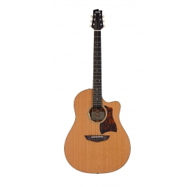 FGN Steel String Guitar, AG1E, Natural Flat, Preamp, Bag