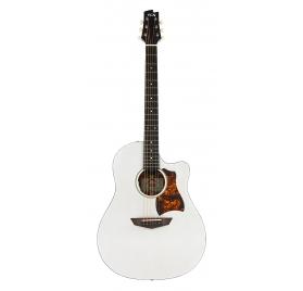 FGN Steel String Guitar, AG1E, Transparent White Flat, Preamp, Bag