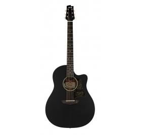 FGN AG1E Transparent Black Flat elektroakusztikus gitár