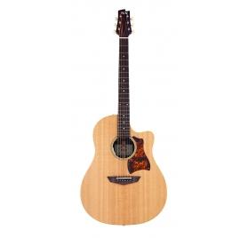 FGN Steel String Guitar, AG2E, Natural Flat, Preamp, Bag