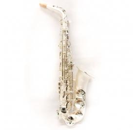 L.A.Ripamonti 5030VFRSS-SS alto saxophone - silver satin