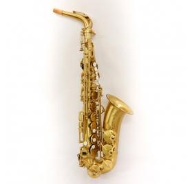 L.A.Ripamonti 5030VFRG-VI contralto saxophone - Golden Satin