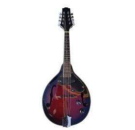 Elektroakusztikus mandolin