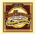 Ernie Ball EARTHWOOD BRONZE 12 STRING MEDIUM 11-52 akusztikus gitárhúr