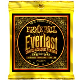 Ernie Ball Ernie Ball Ernie Ball Everlast Coated Bronze Medium