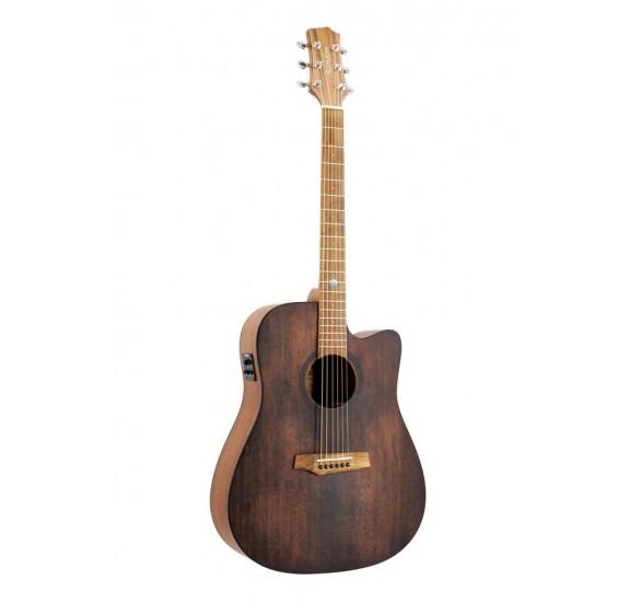 Randon RGI-10VT-CE gitár