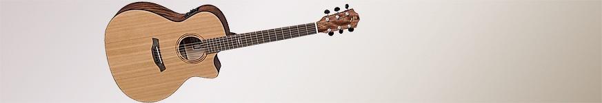 Akusztikus és elektroakusztikus gitárok